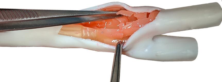 High-Fidelity Vasculature